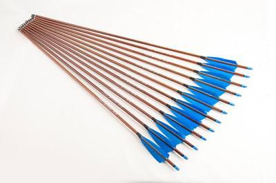 "12x 31""CARBON ARROWS FEATHER COMPOUND RECURVE BOW HUNTING TARGET WOOD WRAP SP400"