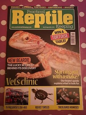 Practical Reptile Keeping Magazine March 2014 MBox1750 Vets clinic