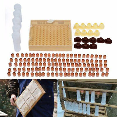 Complete Beekeeping Tool Kit Queen Rearing System Cupkit Comb Box Case set pack