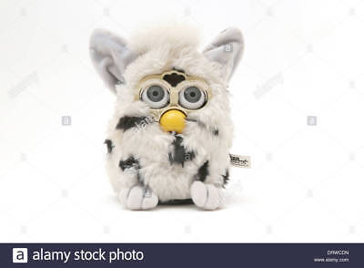 tiger black and white furby