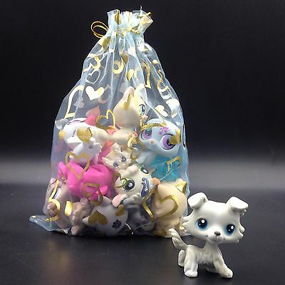 11×littlest pet shop toy COLLIE #363 dog + 10 random pets lot with gift bag