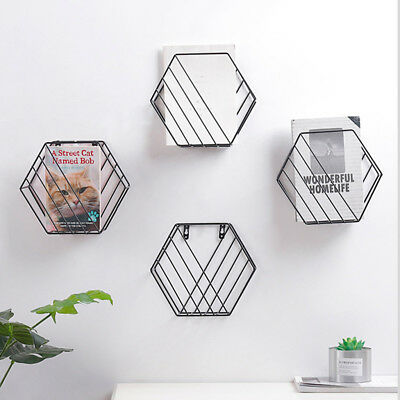 Hexagon Wall Mounted Floating Shelves Metal Wire Frame Plant Display Holder