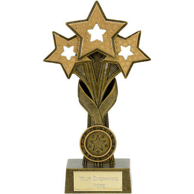 Star Cascade 24cm Resin Trophy Award *Free Personalised Metallic Label* A1869C
