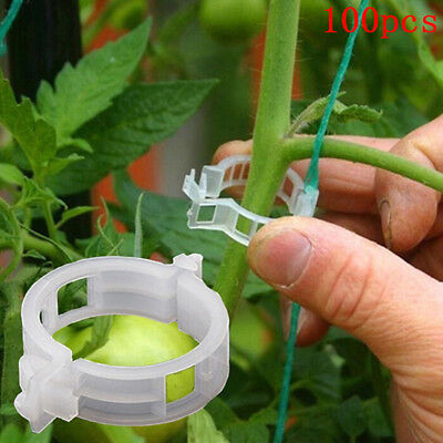 100pcs veggie garden plant support clips for trellis twine greenhouseQR