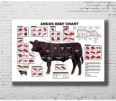 BEEF POSTER 24INX36IN Meat Cuts Made Easy Cooking Chart