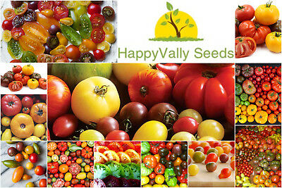 25 TOMATO Seeds Packs San Marzano Red Cherry Mortgage Lifter Yellow Currant Krim