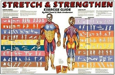 Stretch & Strengthen Chart by Anatomical Chart Company Staff Laminated