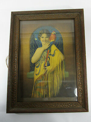 Antique Print sitting pretty art deco woman vintage parrot pinup yellow macaw