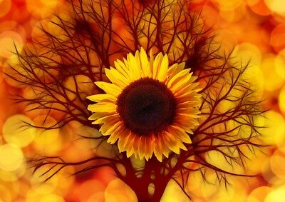 Beautiful Abstract Sun Flower tree Print Home Decor Wall Art choose your size
