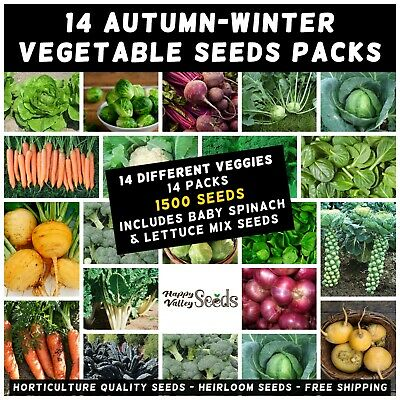 MIXED AUTUMN WINTER Vegetable 1050+ Seeds 12 PACKS Cold Temperate Crop Heirloom