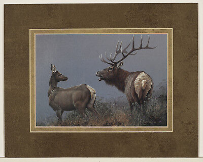 The Call by Patrick Lundquist 8x10 double matted art print - Elk