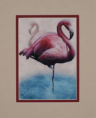 Flamingos by Kevin Daniel 8x10 double matted art print