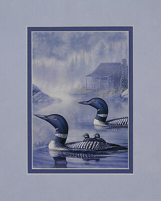 Shoreline Cruise - Loons by Sam Timm 8x10 double matted art print