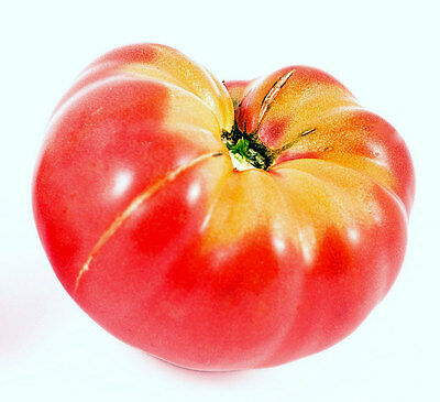 Tomato Seeds, Pink Brandywine, Pink Tomatoes, Heirloom Non-Gmo Tomatoes, 100ct