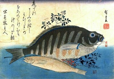 Set of 2 Repro Japanese Woodblock Shoal Fish Prints Pictures by Ando Hiroshige