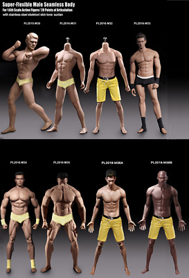 Phicen 1/6 Scale Super Flexible Male Muscular Seamless Body USA