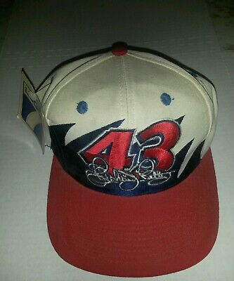 Richard Petty 43 hat Nascar logo 7 snapback c0b4c80b7259