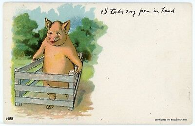 Postcard - Pig Holding His Pen, I Take My Pen in Hand, Looks like Geico Pig