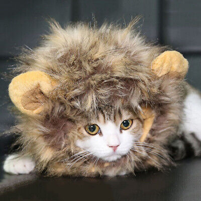 Pet Costume Lion Mane Wig For Cat Halloween Xmas Clothes Fancy Dress With Ears