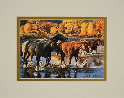 Horses of the Creek by Tim Cox 8x10 double matted art print - horses