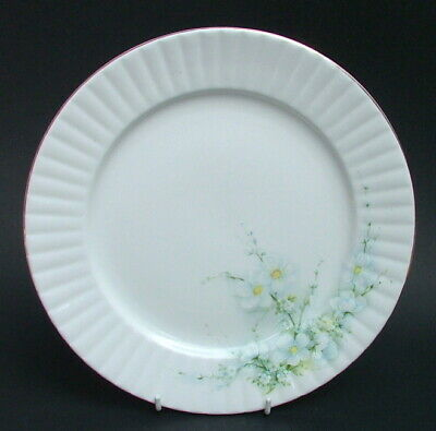 Royal Stafford Blossom Time Pattern Lg Size Dinner Plates 26cm Dia - Look in VGC
