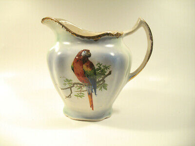 Rare Vintage Early Harker 1840 Pottery Macaw Parrot PItcher