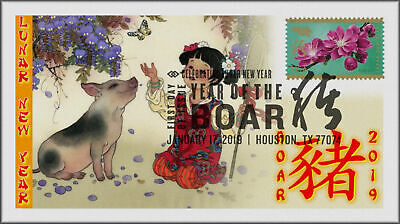 Chinese Lunar Year of the Pig - Boar 2019 First Day Cover #101