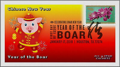 Chinese Lunar Year of the Pig - Boar 2019 First Day Cover #205