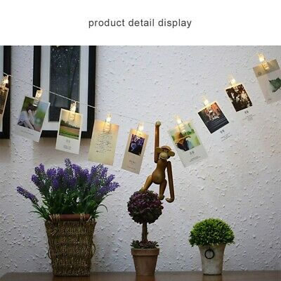 10/20/30 LED Hanging Picture Photo Clip Light Creative Lantern Party Decoration