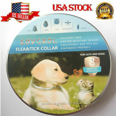 Dewel Eovcrol Anti Flea and Tick Collar for Small Large Dogs Cats Pets 8 Month