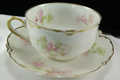 Haviland Cup/Saucer S 66 G/Apple Blossoms/Nice Gold