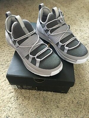 c09f3456d5b3fe Mens Air Jordan Trainer Pro Training Shoes Gray Atmosphere white 11 New In  Box