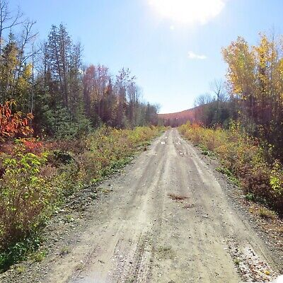 ***own 40.3 Acres +/- Of Land In Northern Maine Next To The Canadian Border***