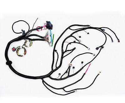 1997 2006 Dbc Ls1 Standalone Wiring Harness With 4l80e Transmission
