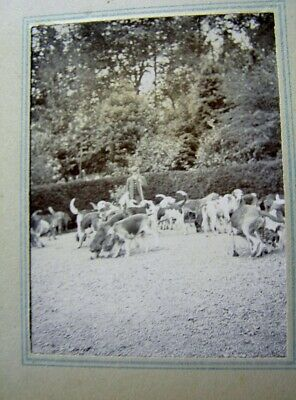 HUNTING with HOUNDS TERRIERS/TWO 1900 PHOTOGRAPH ALBUMS with 125+ ORIGINAL PHOTO