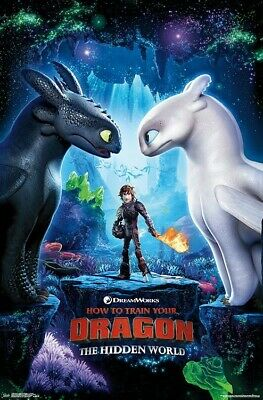 HOW TO TRAIN YOUR DRAGON 3 - KEY ART POSTER - 22x34 - MOVIE 17360
