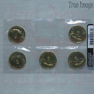 2012 London Olympic Lucky Loonie - $1 One Dollar Circulation 5-Coin Pack Canada