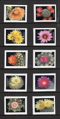 US 2019 Forever CACTUS CACTI Flowers Singles from Booklet - Free USA Shipping
