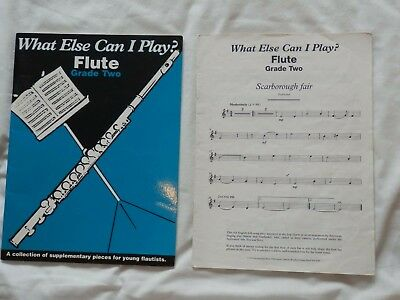 What Else Can I Play Flute Grade 2 by Faber Music Ltd (Paperback, 2007)
