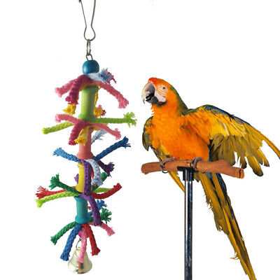 Bird Toy Chew Bell Funny Colorful Play Training Parrot Hanging Swing Parakeet