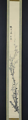 """JAPANESE HANGING SCROLL ART Painting """"Plum blossoms"""" Asian antique  #E6208"""
