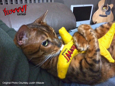 YEOWWW! BANANA CAT TOY! ~ 100% ORGANIC CATNIP ~ FREE 1st POST~  OVER 600 SOLD