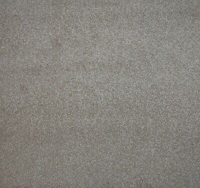 HARDWEARING Thick Minky Beige Action Back Saxony Carpet 4m Wide £7.99m²
