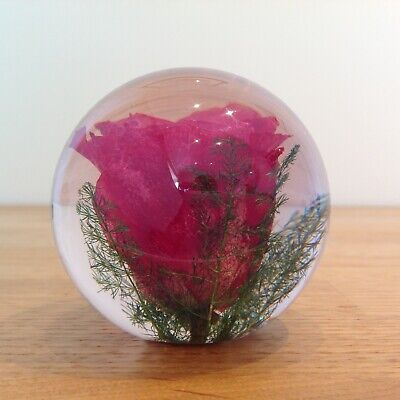 ROSE PAPERWEIGHT Made With Real Rose - Botanical Collectable Country Gift Art