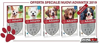 Advantix Bayer - 4 pipette ANTIPULCI-  da 0-4 / 4-10 / 10-25 / 25-40 / 40-60 kg