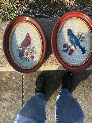 Vintage Pair Cardinal and Blue Jay Bird Needlepoint Cross Stitch  Framed Art 8x6