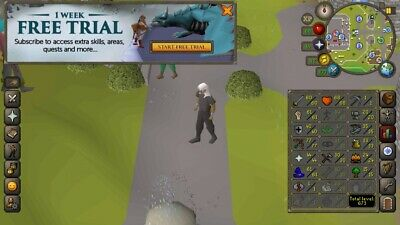 OSRS ACCOUNT LVL 71, Robin Hat, Fury, Obby Cape And Many Valuable Items