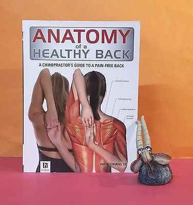 P Striano: Anatomy of a Healthy Back: A Chiropractor's Guide to a Pain-free Back