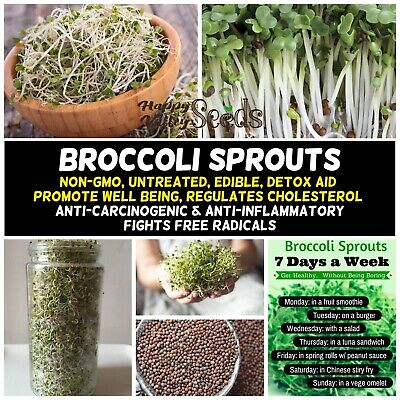 BROCCOLI Seeds SPROUTS Sprout Sprouting 50g-2kg BULK SEEDS autumn winter BROCOLI