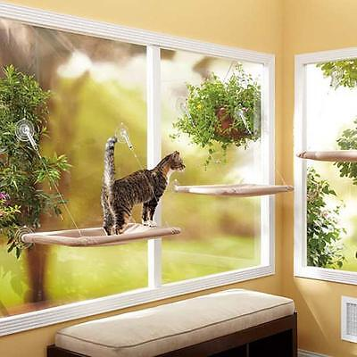 Cool Perch Cat Bed Window Seat Kitty Mounted Pet Hanging Hammock Dailytribune Chair Design For Home Dailytribuneorg